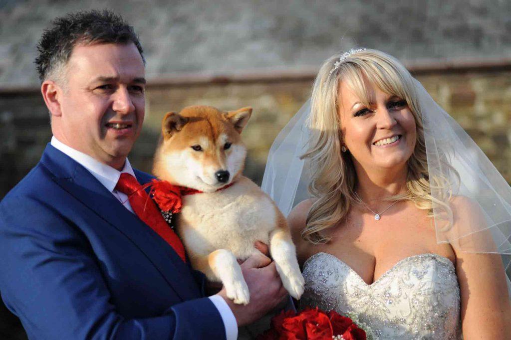 Dogs love a wedding do too!
